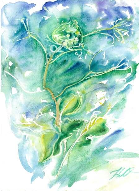 АННА НАТАЛИЯ МАЛАХОВСКАЯ. Рисунок «Ветер»