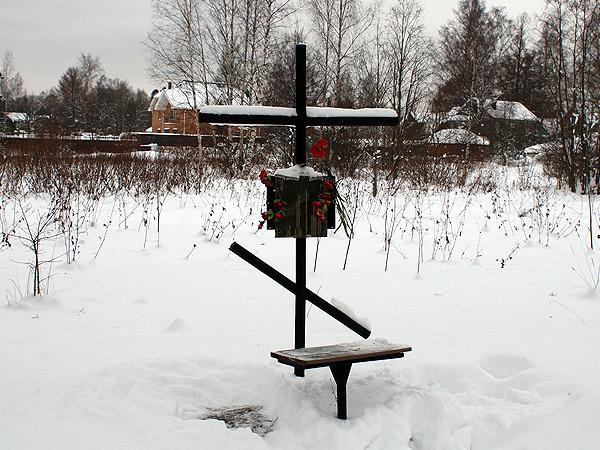 розы на вероятном месте расстрела Николая Гумилёва в Ковалевском лесу
