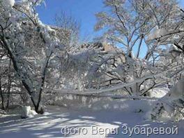 фото Веры Зубаревой