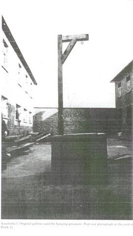 Непокорных узников расстреливали на месте или вешали. Эта виселица была установлена во дворе 11-го блока  лагеря Освенцим-I.