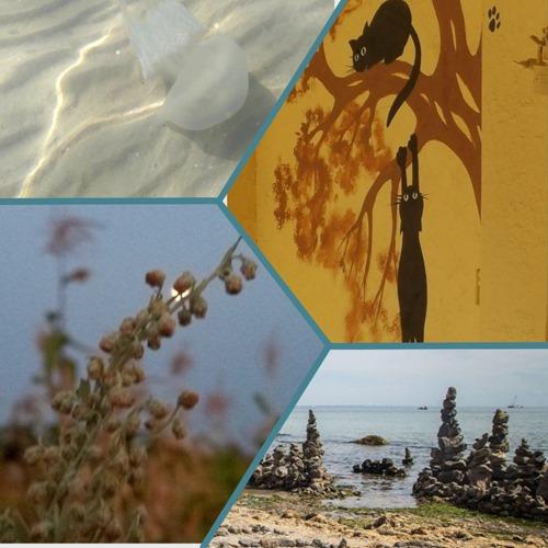 ШАРГА.Collages3